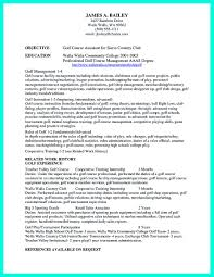 Resume Job History Format by Sample Student Resume Cipanewsletter Business Steve Jobs Resume