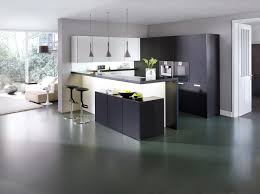 Black And White Kitchens Ideas 90 Best Black And White Kitchens Images On Pinterest White