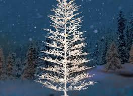 warm white tree lights part 50 pre lit led balsam fir