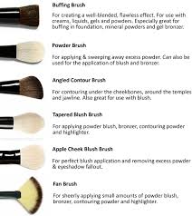you need and how to use them face brushes there the makeup we use previousnext