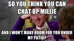 What Now Meme - millie memes millionwaystomillie
