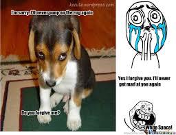 Puppy Face Meme - sad puppy by brittsc7 meme center