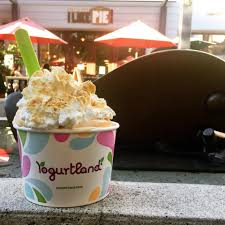 yogurtland home