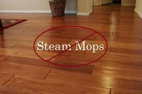 building a steam cleaning wood floors