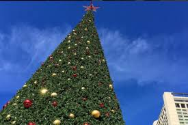 union square christmas tree goes up way too early curbed sf