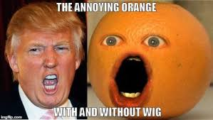 Orange Memes - donald trump annoying orange meme memes pinterest donald