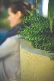 54 best planters images on pinterest planters concrete and
