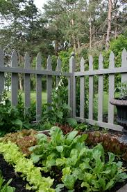 Deer Proof Fence For Vegetable Garden 530 Best Gardening For Veggies Images On Pinterest Potager