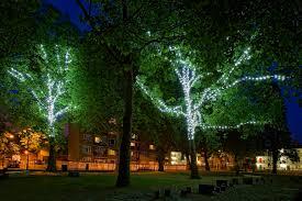 mg 2938a tree lights jpg 1280 854 external