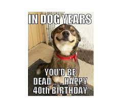 happy 40th birthday memes wishesgreeting