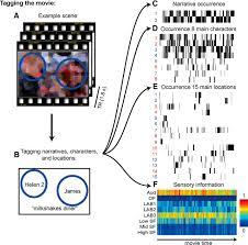 coding of event nodes and narrative context in the hippocampus