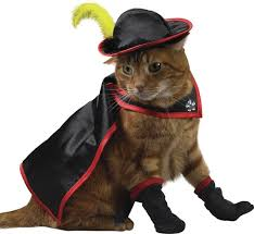 Cool Cat Halloween Costume 30 Awesome Dog Cat Halloween Costumes Slideshow Cattime