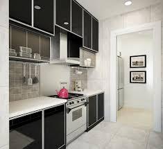 modern wet kitchen design modern wet kitchen design conexaowebmix com kitchen idea