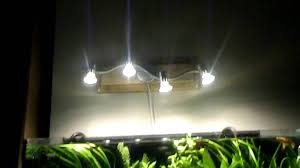 best led light for planted tank gu10 planted tank experiment part 1 youtube