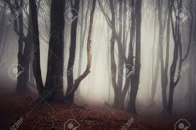 haunting halloween background path in a dark spooky forest with fog on halloween stock photo