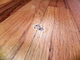repair gouge in hardwood floor wood floors