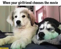 Dog Girlfriend Meme - girlfriend memes starecat com