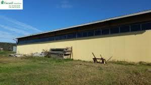 affitto capannone roma affitto capannone uso magazzino mq 480 cod a 388 roma flaminia