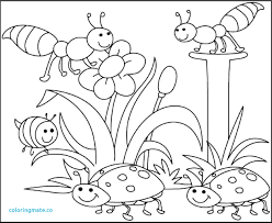 coloring pages to print spring free spring coloring pages downloadable beautiful ribsvigyapan com