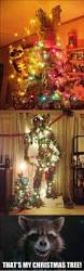 christmas tree memes best collection of funny christmas tree pictures