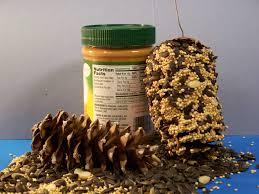 christmas tree pests don u0027t panic effective wildlife solutions