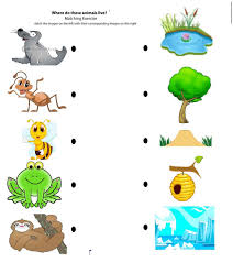 free printable matching animals to their home worksheet 7 pre