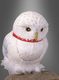 Snowy Owl Halloween Costume 17 Harry Potter Costumes Ideas Images Blog