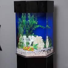 clear for life hexagon aquarium hayneedle