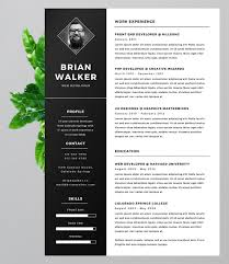 Bold Resume Template by 15 Eye Catching Resume Templates That Will Get You Noticed