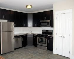 Kitchen Cabinet Apartment by Kitchen Furniture Ash Kitchen Cabinets Stained Rustic Wood Cabinet