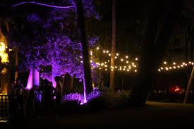 Outdoor Up Lighting For Trees Outdoor Lighting Festoon U0026 Up Lighting Wedding Dj Hertfordshire