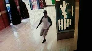 search continues for suspect in citrus park mall shooting tbo