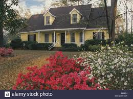 Cape Code Style House Yellow Cape Cod Style House In South Carolina With Spring Blooms