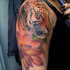 best 24 tiger tattoos design idea for and tattoos