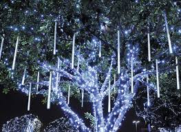 wrapping evergreens and bushes lights in trees outdoors