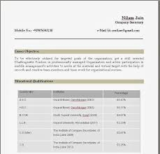 construction manager project resume essays about importance of