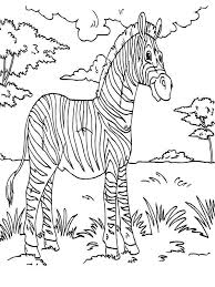 rainforest animal coloring pages getcoloringpages