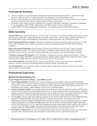 Sample Project Summary Template Project Summary Document Template by Resume Summary Examples For Customer Service Resume Templates