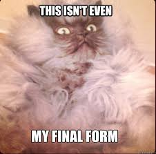 Colonel Meow Memes - this isn t even my final form colonel meow quickmeme