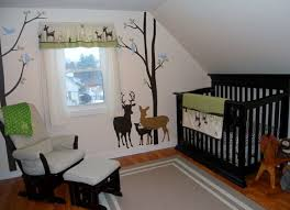 Outdoor Themed Baby Room - 17 best baby outdoor theme nursery images on pinterest babies