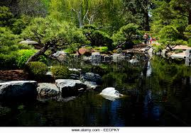 Denver Botanic Gardens Free Days Best Of Denver Botanic Gardens Free Days Pattern Garden Gallery