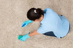 upholstery missoula mt green clean carpet machine carpet upholstery and tile cleaning
