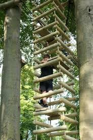 Tree House Backyard by Best 25 Treehouse Ideas Ideas On Pinterest Treehouses