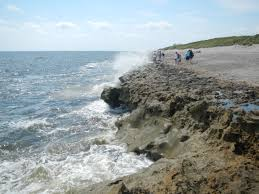 Map Of Florida West Coast Beaches by Blowing Rocks Preserve Jupiter Fl Beach Where To Go Fl Beaches