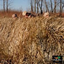 Color Blind Camouflage Blind Grass Ebay