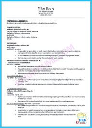 Resume For Accounts Payable Clerk Auditor Resume Examples