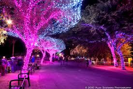 phoenix zoo lights tickets zoo lights gilbert arizona 85295