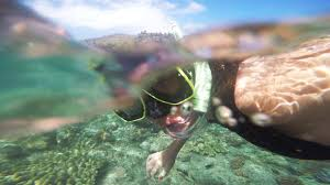 Nevada Snorkeling images Stream snorkeling destinations and where to camp nearby jpg