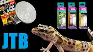 Reptile Heat Lamps Safety by Leopard Gecko Heating And Lighting Youtube
