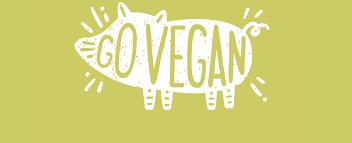 how i convinced my family to go vegan ecorazzi